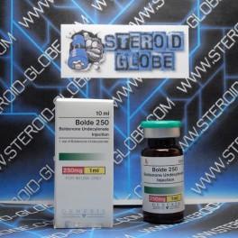 Bolde 250, Boldenone Undecylenate, Genesis
